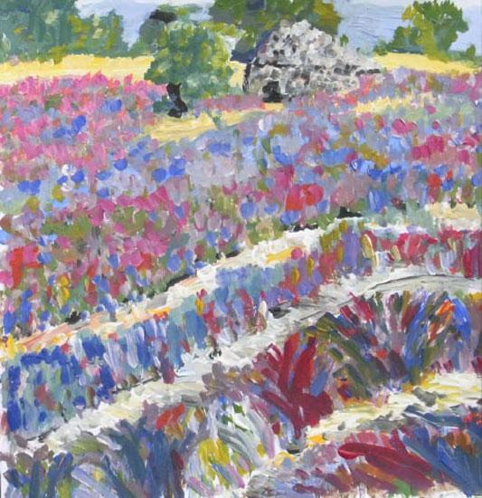 Lavendelfeld mit Steinhütte