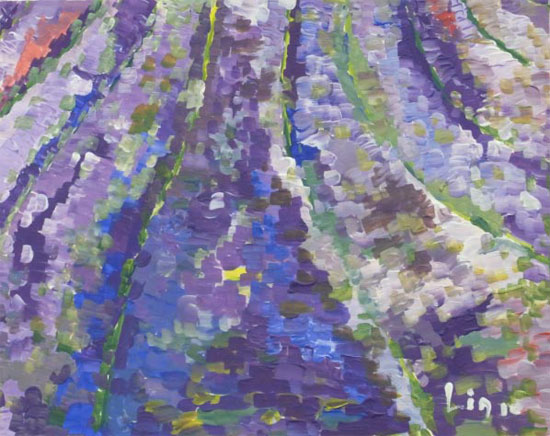 Lavendel, das blaue Gold